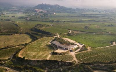 El Sacramento, Belgische wijnbouwer in Spanje