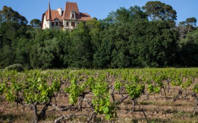Château des Bormettes – er is meer dan rosé in de Provence